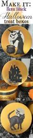 Halloween Treats Martha Stewart by 28 Best Fall U0026 Halloween At Fhc Images On Pinterest Holidays