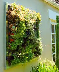 outdoor living walls home ideas 2016