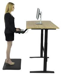 Stand Up Computer Desk by 5 Yr Warranty With Free Shipping Electric Height Adjustable