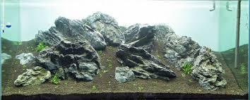Mountain Aquascape Brown Algae Diatoms Aquascaping Wiki