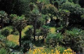 Ventnor Botanic Gardens Gardens Guide Open Garden At Gardens Guide