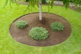 easy landscape lawn edging ideas u0026 best border designs