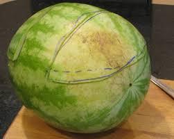 basket fruit how to make a watermelon basket fruit salad 7 steps