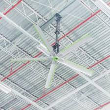 big air ceiling fan china whale power technology industrial hvls ceiling fan with big