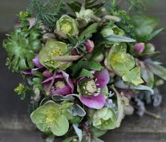 wedding flowers surrey 55 best seasonal winter flowers images on winter
