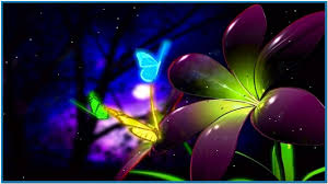 animated butterfly screensavers animated moving wallpapers