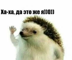 Meme Haha - create meme haha yes it is h0 haha yes it is h0 memes create