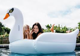 Inflatable Pool Floats by White Swan Pool Float Mimosa Inc