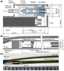 osa single cardiac cycle three dimensional intracoronary optical