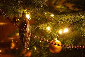 8 places to buy a christmas tree in indianapolis menchhofer tree
