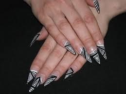 30 best animal print nails images on pinterest zebra nail