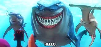 finding classmates finding nemo discovering yourself in a sea of confusion just