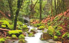 welcome to all 28 wild and wonderful parks of santa clara county