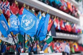 United Nation Flag Hudson U0027s Un Centre Store