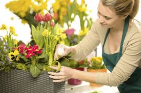 best flower delivery tips for choosing the best flower delivery services