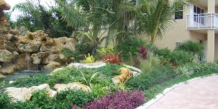 terrific front yard landscaping ideas with palm trees photo design