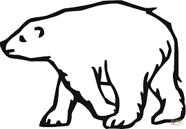 polar bear 20 coloring page free printable coloring pages