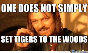 Tiger Woods Meme - tiger woods dised by domo1324 meme center