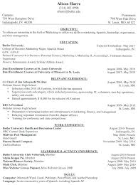 formats for resume hybrid resume exles