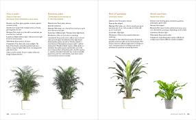 floor and decor ta what plants contribute to interior design timber press