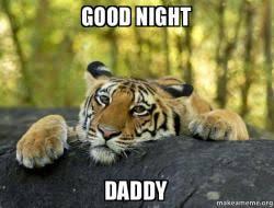 Good Nite Memes - good night daddy nite nite make a meme