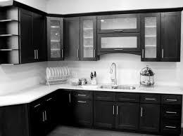 modern kitchen cabinet door changing kitchen cabinet doors luxurious home design