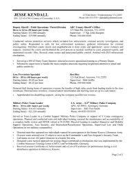 federal resume templates federal resume template therpgmovie