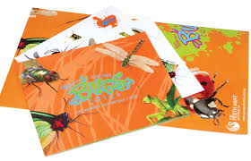 young collectors 2010 australian backyard bugs 1 coin set the
