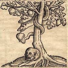 the apocrypha of genesis part 2 what is the tree of knowledge of