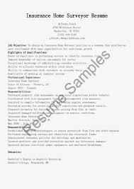disability support worker resume example resume personal support worker sle 97 similar docs mattandmegan worker job description resume psw
