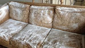nettoyer tissu canapé comment nettoyer un canapé en tissu facilement