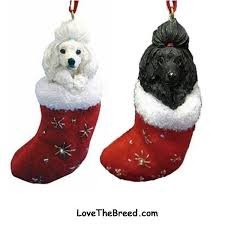 poodle ornament in lovethebreed