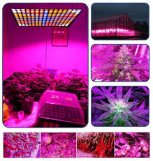 Fluorescent Light For Plants Spectrum Red And Blue Led Grow Lights Indoor Plants Fluorescent