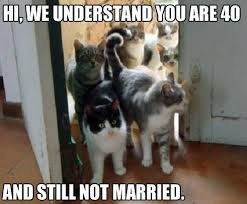 Marriage Memes - the best marriage memes memedroid