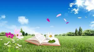 books wallpaper book field flowers flying sky nature mood 54429 1920x1080 jpg