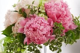 Wedding Flowers Peonies Wedding Flower Arrangements U0026 Design Flower Arranging For