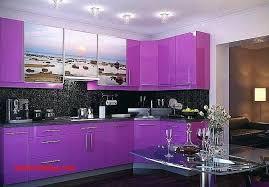 cuisine en violet couleur de cuisine tendance alaqssa info
