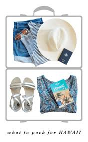 Hawaii How To Fold Dress Shirt For Travel images What to pack for hawaii png