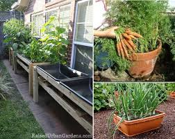 Home Vegetable Garden Ideas Small Home Vegetable Garden Ideas House Decor Ideas