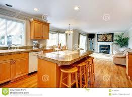 cozy family room designscozy family room design idea with kitchen