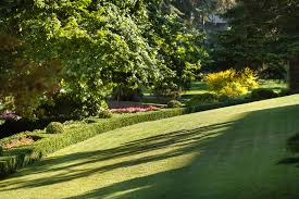 spring landscaping spring clean up services commercial lawn care landscaping company