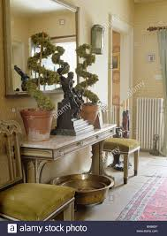 Large Console Table Large Mirror Above Topiary Plants On Console Table In Cream