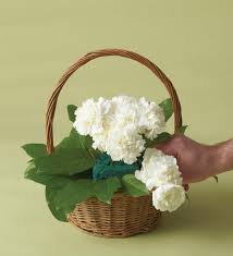 dog flower arrangement how to arrange 1 800 flowers a dog able snapguide