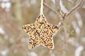 Bird Seed Decorations For Christmas Tree by How To Make Birdseed Ornaments Easy Birdseed Ornaments Recipe