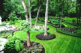 plants for the house landscape architecture planting around trees shrubs for around the