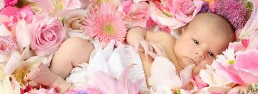 baby flowers baby names inspired by flowers bloomnation