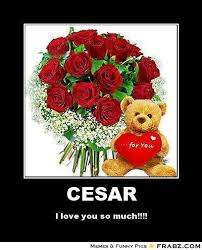 imagenes de i love you so much i love you so much rose