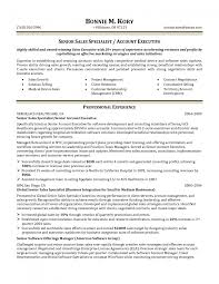 resume for accounts executive cover letter account representative resume patient account