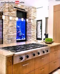 steinwand küche küche steinwand aquarium holz theke beleuchtung