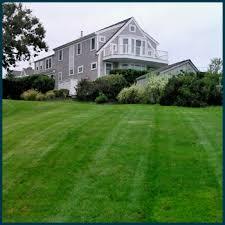 whitten landscaping maintenance